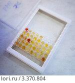 Купить «Биохимическая лаборатория. Пробирки с плазмой», фото № 3370804, снято 9 февраля 2012 г. (c) Ольга Денисова / Фотобанк Лори