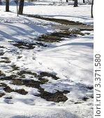Купить «Проталины в городском сквере», фото № 3371580, снято 22 марта 2012 г. (c) Самойлова Екатерина / Фотобанк Лори