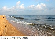 Купить «Ракушечник на пляже в станице Голубицкой на Азовском море», эксклюзивное фото № 3377480, снято 15 августа 2009 г. (c) Анна Мартынова / Фотобанк Лори