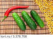 Овощи и крупы: три огурца, перчик чили и кукуруза. Стоковое фото, фотограф Илья Мартысюк / Фотобанк Лори