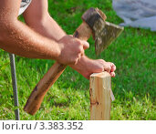 Купить «Рубка дров на растопку», фото № 3383352, снято 9 июля 2011 г. (c) Алёшина Оксана / Фотобанк Лори