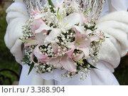 Купить «Букет невесты», фото № 3388904, снято 12 августа 2011 г. (c) Пересыпкина Елена Игоревна / Фотобанк Лори
