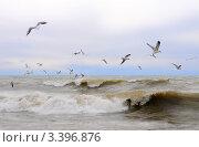 Купить «Чёрное море», эксклюзивное фото № 3396876, снято 15 марта 2012 г. (c) Юрий Морозов / Фотобанк Лори