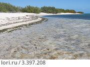 Купить «Куба. Берег моря», фото № 3397208, снято 15 декабря 2011 г. (c) Сергей Дубров / Фотобанк Лори