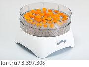 Купить «Электросушилка с сушеными абрикосами», фото № 3397308, снято 3 марта 2012 г. (c) Сергей Дубров / Фотобанк Лори