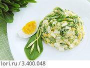 Купить «Рамен салат с вареным яйцом», фото № 3400048, снято 25 марта 2012 г. (c) Юлия Маливанчук / Фотобанк Лори