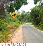 """Купить «Предупреждающий знак """"Слоны""""», фото № 3403108, снято 24 января 2011 г. (c) Дмитрий Наумов / Фотобанк Лори"""