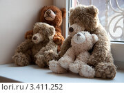 Семья плюшевых медведей (2012 год). Редакционное фото, фотограф Артеменко Арина / Фотобанк Лори