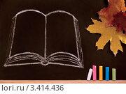 День Знаний. Доска, кленовые листья и мел. Стоковое фото, фотограф Диана Гарифуллина / Фотобанк Лори