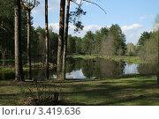 Весенний лес и река. Стоковое фото, фотограф Витинская Светлана / Фотобанк Лори