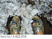 Резиновые сапоги с цветным рисунком в снегу. Стоковое фото, фотограф Галина Власова / Фотобанк Лори