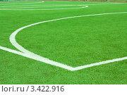 Фрагмент футбольного поля. Стоковое фото, фотограф Павел Воробьёв / Фотобанк Лори