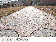 Дорожка из тротуарной плитки. Стоковое фото, фотограф Лев Соловьев / Фотобанк Лори
