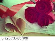 Свадебное фото. Стоковое фото, фотограф Ольга Никитина / Фотобанк Лори