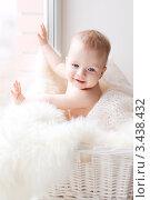 Портрет младенца, сидящего в корзине. Стоковое фото, фотограф Екатерина Штерн / Фотобанк Лори