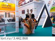 Купить «Международная выставка Мосбилд-2012», фото № 3442868, снято 11 апреля 2012 г. (c) nikshor / Фотобанк Лори