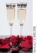 Свадебные бокалы и кольца. Стоковое фото, фотограф Sasha Snegireva / Фотобанк Лори
