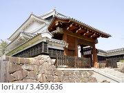 Купить «Замок  Сёрюдзи, г.Нагаокакё, Япония», фото № 3459636, снято 2 апреля 2012 г. (c) Иван Марчук / Фотобанк Лори