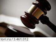 Купить «Молоток судьи», фото № 3461012, снято 21 октября 2009 г. (c) Vesna / Фотобанк Лори
