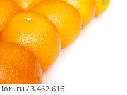 Апельсины на белом фоне. Стоковое фото, фотограф human / Фотобанк Лори