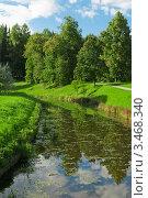Купить «Летний пейзаж с водоемом и деревьями», фото № 3468340, снято 10 сентября 2011 г. (c) Лагутин Сергей / Фотобанк Лори