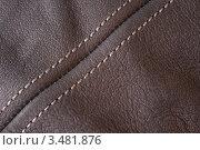 Купить «Коричневый кожаный фон со строчкой», фото № 3481876, снято 14 апреля 2012 г. (c) Шушпанова Любовь / Фотобанк Лори