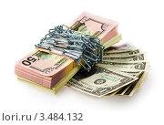 Купить «Сохранение капитала», фото № 3484132, снято 4 марта 2011 г. (c) ElenArt / Фотобанк Лори