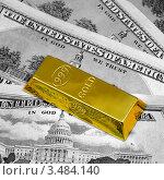 Купить «Американские доллары и слиток золота 999 пробы», фото № 3484140, снято 4 марта 2011 г. (c) ElenArt / Фотобанк Лори