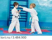 Купить «Два мальчика занимаются каратэ в спортивном зале», фото № 3484900, снято 21 января 2012 г. (c) Дмитрий Калиновский / Фотобанк Лори