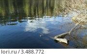 Лестница в озере. Стоковое видео, видеограф Андрей Леонидов / Фотобанк Лори