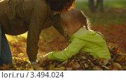 Осенние прогулки мамы и дочки. Стоковое видео, видеограф Павел Меняйло / Фотобанк Лори