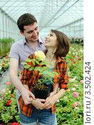 Купить «Двое влюбленных среди цветов в оранжерее», фото № 3502424, снято 7 июня 2011 г. (c) Величко Микола / Фотобанк Лори