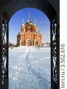 Владимирский собор на Украине. Зима. Стоковое фото, фотограф Хромушин Тарас / Фотобанк Лори