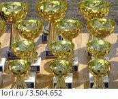 Призовые кубки. Стоковое фото, фотограф Стрельченко Сергей / Фотобанк Лори