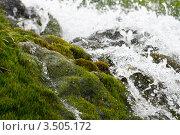 Водопад. Стоковое фото, фотограф Госьков Александр / Фотобанк Лори