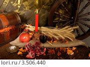 Натюрморт со свечой. Стоковое фото, фотограф Николай Белин / Фотобанк Лори