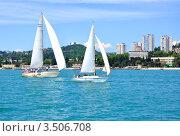 Купить «Регата яхт открытого моря (круизных яхт) на фоне побережья Сочи», фото № 3506708, снято 28 мая 2011 г. (c) Анна Мартынова / Фотобанк Лори
