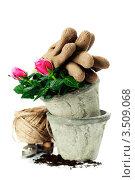 Купить «Садовые инструменты и цветок на белом фоне», фото № 3509068, снято 24 апреля 2012 г. (c) Наталия Кленова / Фотобанк Лори