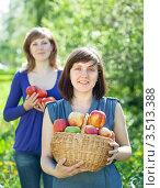 Купить «Две девушки с урожаем яблок и помидоров в саду», фото № 3513388, снято 11 мая 2012 г. (c) Яков Филимонов / Фотобанк Лори
