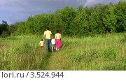 Купить «Родители с сыном бегут по летнему лугу», видеоролик № 3524944, снято 2 июля 2008 г. (c) Losevsky Pavel / Фотобанк Лори