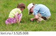 Купить «Дети играют в траве», видеоролик № 3525008, снято 11 июля 2008 г. (c) Losevsky Pavel / Фотобанк Лори