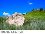 Большой камень на зеленом поле и синем небе. Стоковое фото, фотограф Петр Карташов / Фотобанк Лори