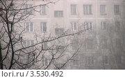 Купить «Снегопад в городе. На фоне жилое здание», видеоролик № 3530492, снято 27 ноября 2008 г. (c) Losevsky Pavel / Фотобанк Лори