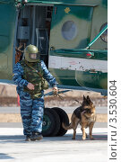 Купить «Кинолог с собакой осматривает вертолет на предмет взрывчатки (бомбы)», фото № 3530604, снято 18 мая 2012 г. (c) А. А. Пирагис / Фотобанк Лори
