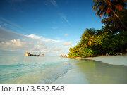 Купить «Побережье океана с пальмами, Мальдивы», фото № 3532548, снято 18 сентября 2011 г. (c) Иван Михайлов / Фотобанк Лори