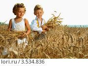 Дети в поле. Стоковое фото, фотограф Емельянова Карина / Фотобанк Лори