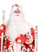 Купить «Дед Мороз», фото № 3538856, снято 11 декабря 2010 г. (c) Сергей Сухоруков / Фотобанк Лори