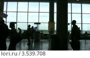 Купить «Пассажиры в холле аэропорта», видеоролик № 3539708, снято 6 июня 2009 г. (c) Losevsky Pavel / Фотобанк Лори