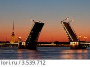 Символ Санкт-Петербурга разведённый Дворцовый мост (2012 год). Редакционное фото, фотограф Литвяк Игорь / Фотобанк Лори