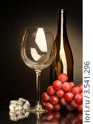 Купить «Композиция с бокалом, бутылкой, виноградом и кусочками льда», фото № 3541296, снято 13 мая 2012 г. (c) Виктор Топорков / Фотобанк Лори